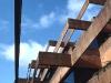 timbers655